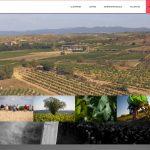 Domaine de L'Arjolle, producteurs de vins plaisirs