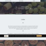 Domaines Pierre Chavin, créateur et négoce de vins