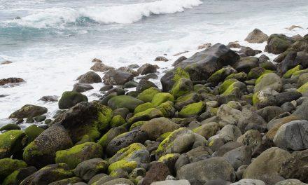 Vacances en bord de mer dans des p'tits coins de paradis