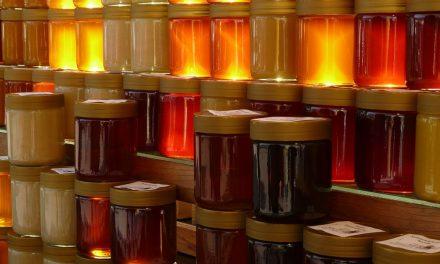 Tout ce que vous devez savoir sur le métier d'apiculteur