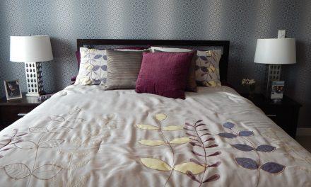 La Punaise de lit, l'ennemie de  nos nuits