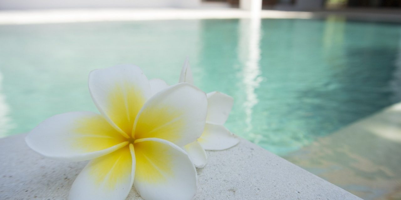 Spa de nage : entre le spa et la piscine