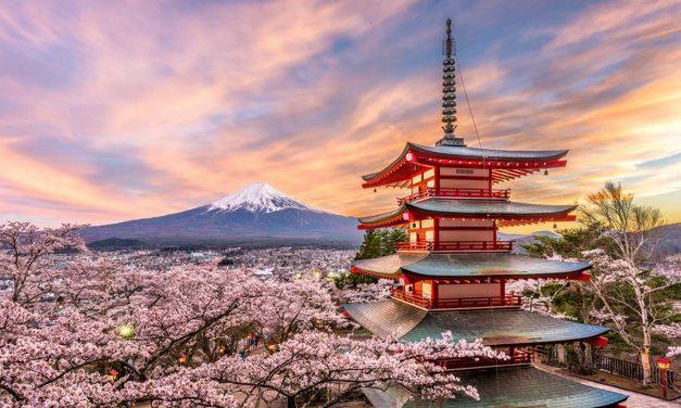 Tout savoir sur l'achat de produits au Japon
