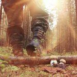 Quel matériel pour évoluer dans les terrains boisés ?