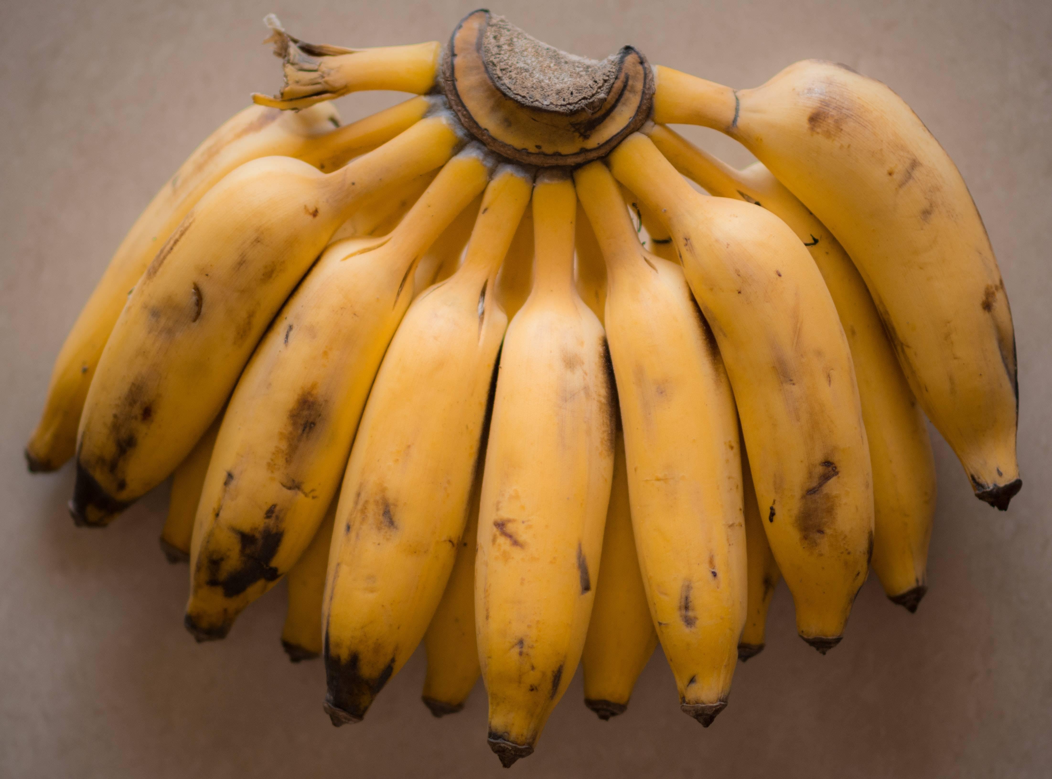 La banane, un fruit delicieux pour de nombreuses recettes